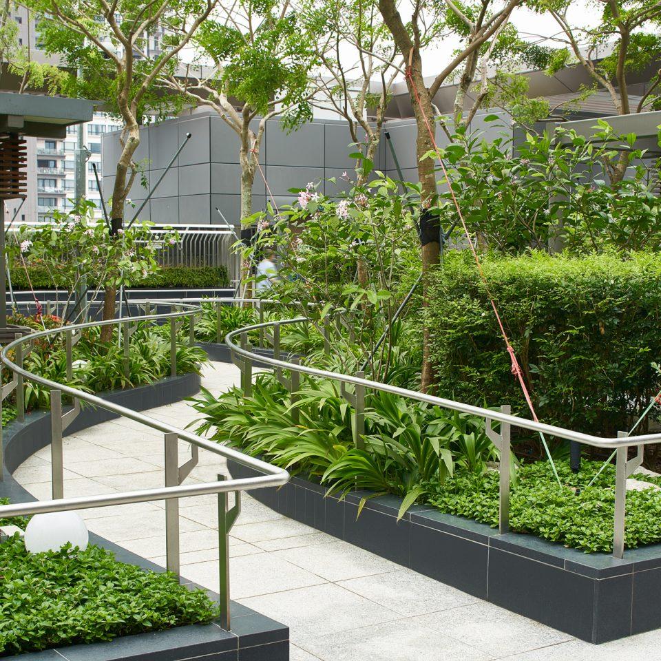 OCH_SG_Inpatient Garden 3930_lo